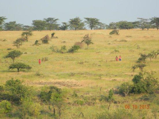 Amani Mara Camp : Hiking Safari (A MUST DO)