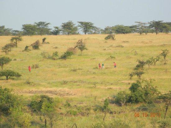 Amani Mara Camp : Hiking Safari