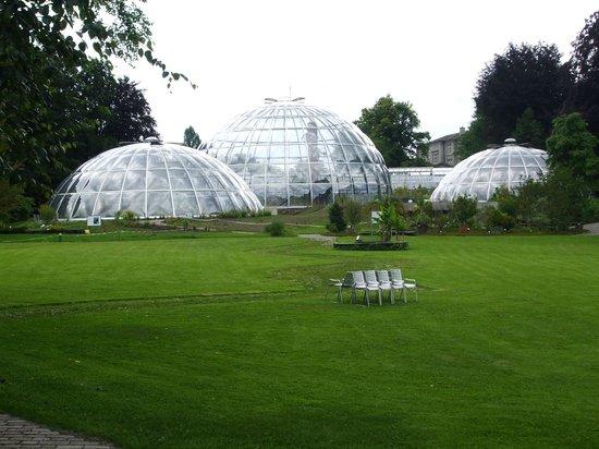 Botanical Garden (Botanischer Garten)照片