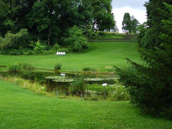 Botanical Garden (Botanischer Garten): Landscape