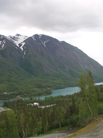 The Alpine Motel : Beautiful surroundings
