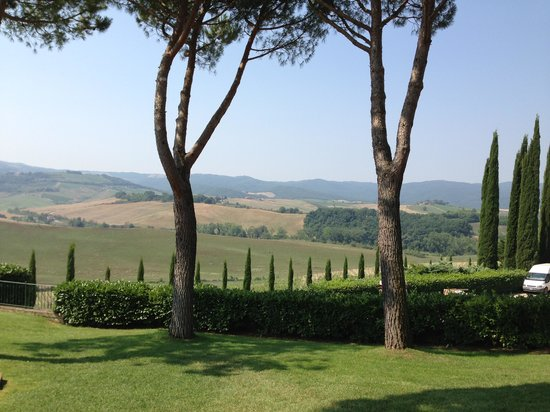Tuscany Transfer - Private Driver Service: Tuscany Winery & Countryside