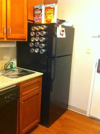 Candlewood Suites Houston IAH / Beltway 8: Fridge and Sink (spices are ours)