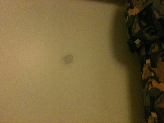 Belmar Motor Lodge : No need to paint the patched hole in the wall