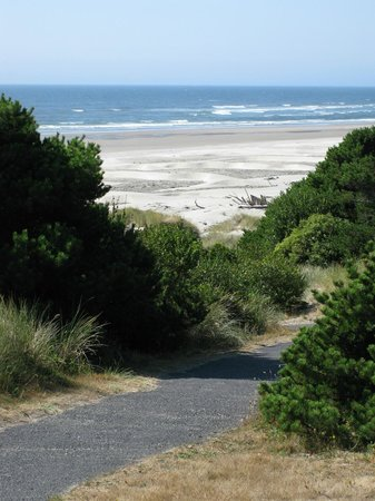 Driftwood Beach State Recreation Site: Footpath to beach - Driftwood Beach near Waldport