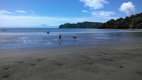 Fidelito Ranch & Lodge: At Curu, chasing a deer on the beach