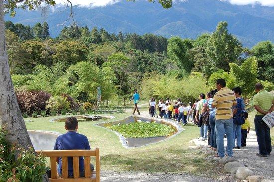 Jardin Botanico de Merida: Entrada al Jardín