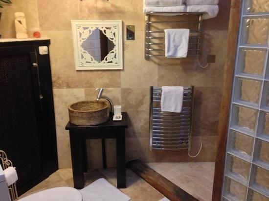 Gramarye Suites B&B: Garden room bathroom with huge walk in shower