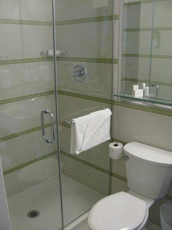 SpringHill Suites New York Midtown Manhattan/Fifth Avenue : Modern bath, very nice shower