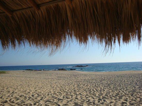 Hotel Suites Villasol: Vista de la playa desde la palapa