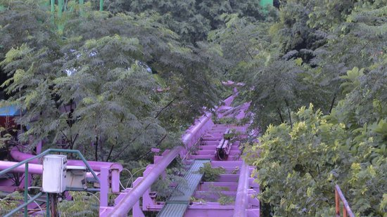Nanhu Amusement Park