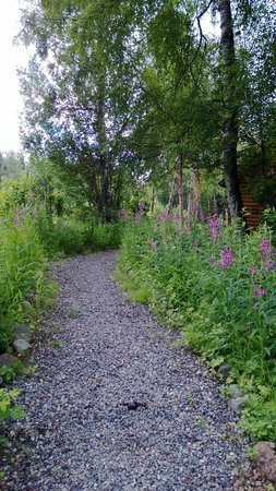 Hatcher Pass Bed & Breakfast : Lovely grounds.
