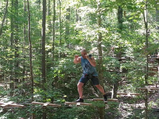 Go Ape Treetop Adventure Course: One of the obstacles