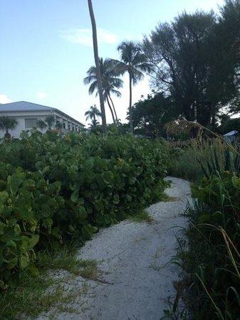 Caribe Beach Resort: walking path from beach to condo