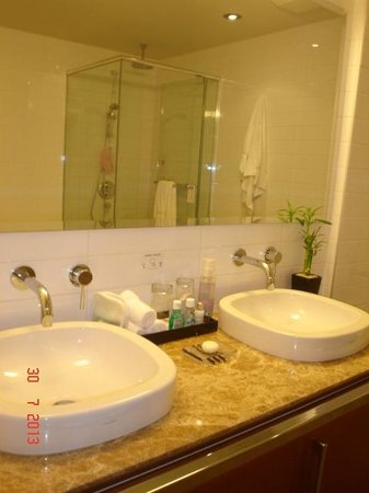 Hotel Le Crystal: Double sinks, suite 716