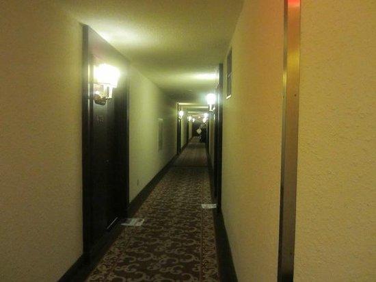 Albert at Bay Suite Hotel: Hallway