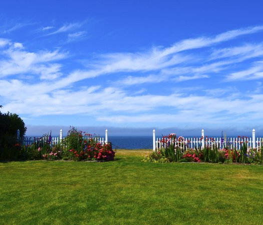 Sea Cliff Gardens Bed & Breakfast: The view in the back of the Inn