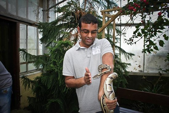 Pili Palas Nature World: Me with the snake wrapping around my arm