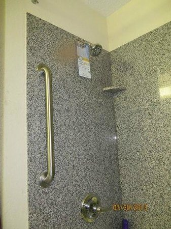 Quality Inn & Suites: one grab bar--high shower head
