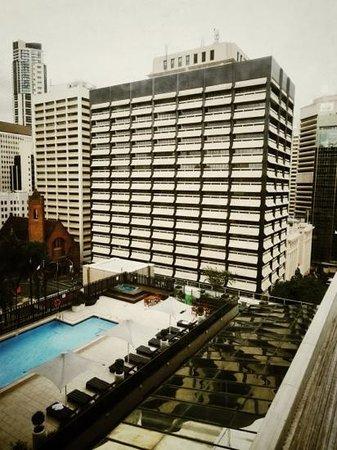Sofitel Brisbane Central: the swimming pool