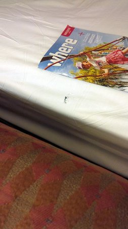Hilton Vancouver Airport: Holes on left side of bed sheet