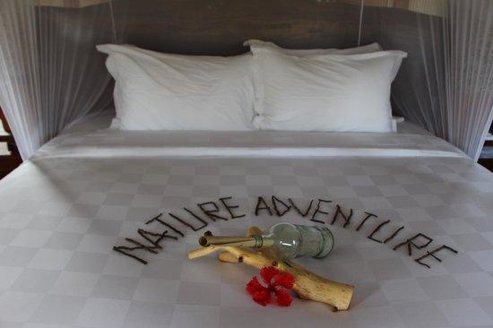 Naya Gawana Resort & Spa: La chambre