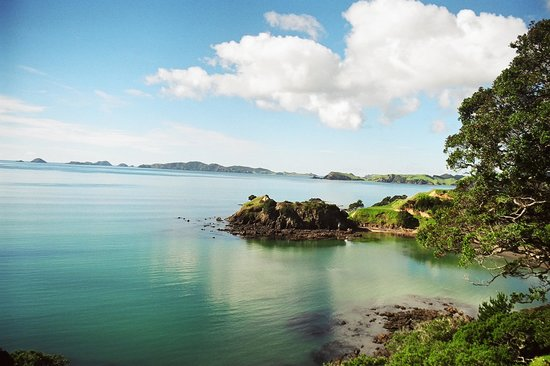 Waiwurrie Coastal Farm Lodge: rapaki