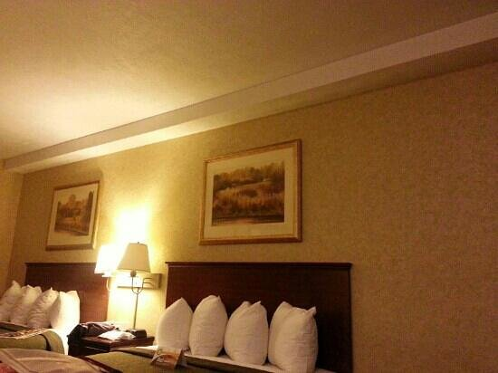 Quality Inn Valley Suites : Room not bad