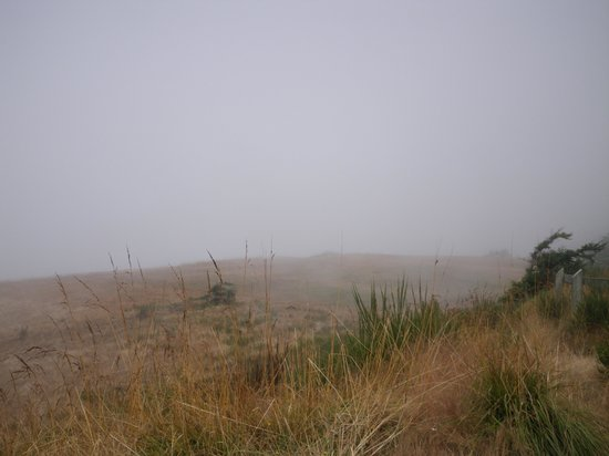 Fort Ebey State Park : Foggy View