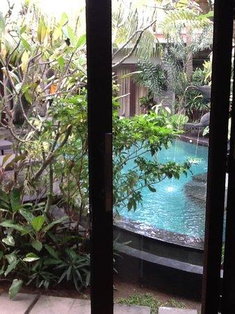 Rumah Santai Villas: another pool pic