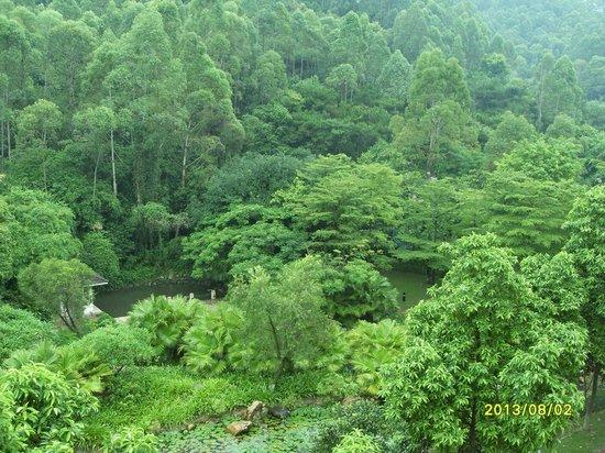 TANGLA Dongguan: 露台外望