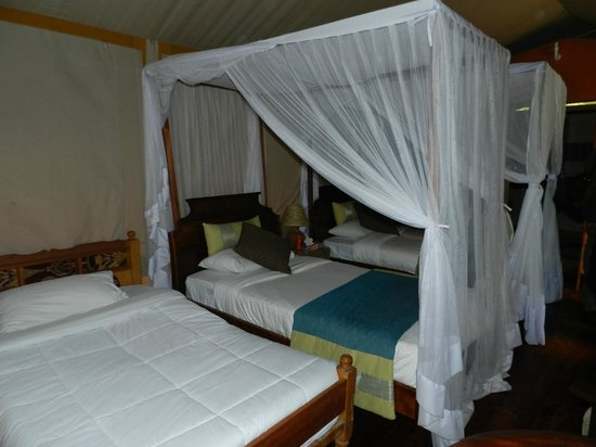 Mara Leisure Camp: Good spacious room.