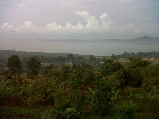 Hotel Kigo Limited : view from the terrace