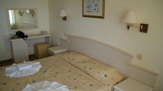 Detelina Hotel: Pokój