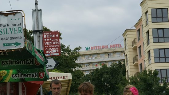 Detelina Hotel: Hotel