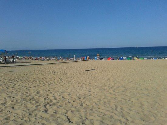 Playa de La Mata: la mata en agosto
