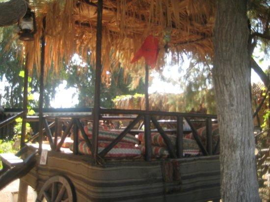 Anatolian Restaurant: good value