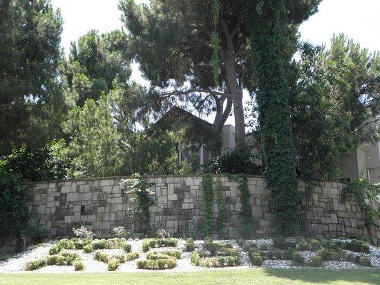 Papillon Ayscha Hotel: Garden