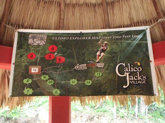 Calico Jack's Belize Jungle Canopy and Zip Lining: The Ultimo Explorer is the only way to go