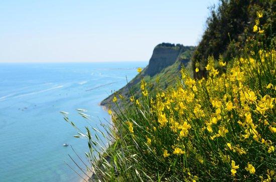 Parc naturel Monte San Bartolo : panorama
