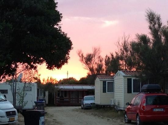 Camping Internazionale di Castelfusano: tramonto sul campeggio zona bungalow e camper