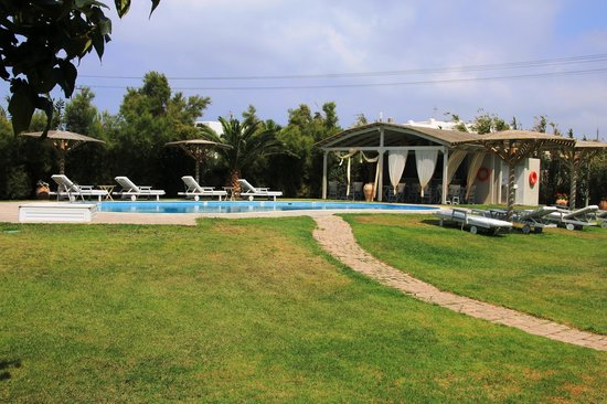 Ammos Naxos Exclusive Apartments: Pool and poolbar
