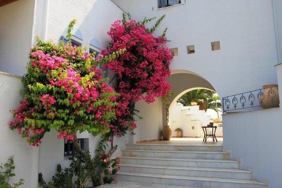 Ammos Naxos Exclusive Apartments: Garden entrance
