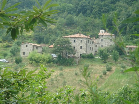 Bio Agriturismo Il Vigno: The complex on the way in