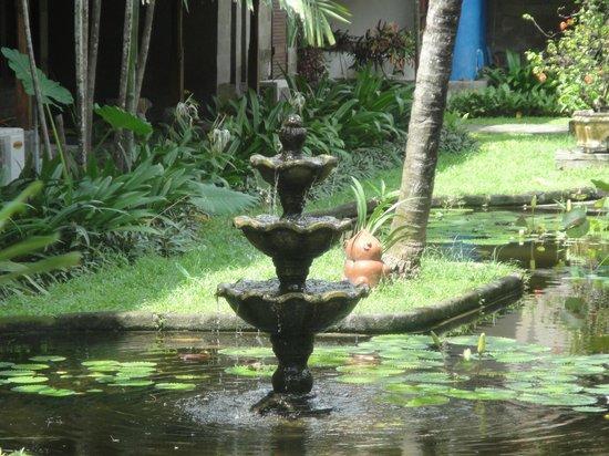 Grand Balisani Suites: водоем в отеле