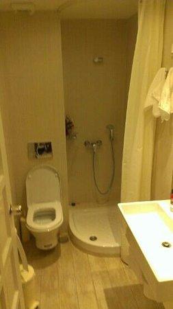Apollon Boutique Hotel: decent bathroom, but clean