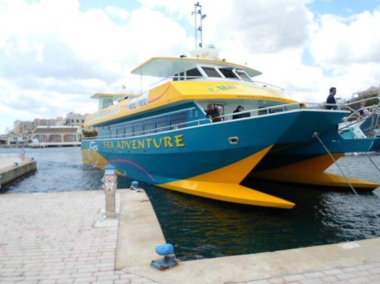 HYB Eurocalas : Porto cristo, promenade en bateau