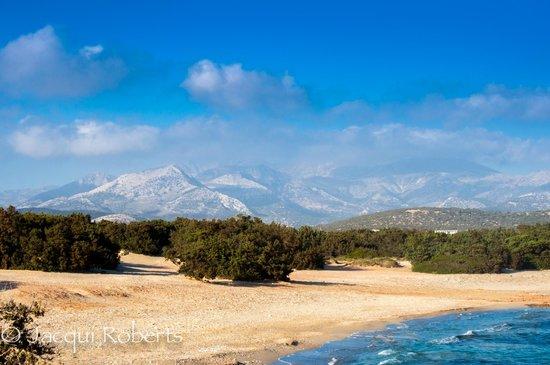 Finikas Hotel Naxos: View around the hotel.