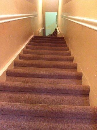 Hotel Wilhelmina: Stairs