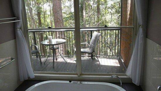 Amytis Gardens Retreat & Spa: Rainforest